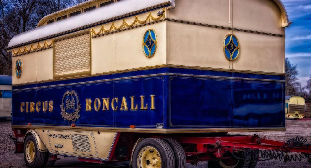 Le cirque Roncalli (image d'illustration)