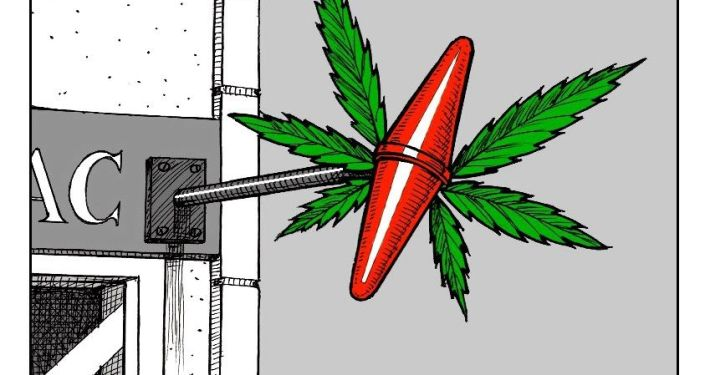 Cannabis récréatif: la question de sa légalisation de nouveau au cœur des débats