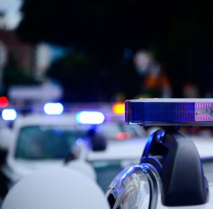 Une voiture de la police (image d'illustration)