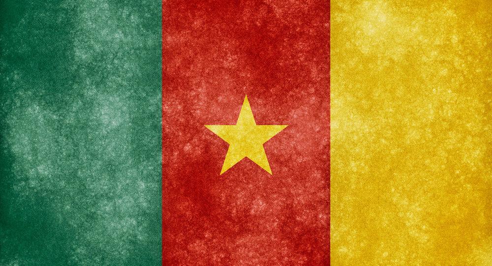 Drapeau du Camerou