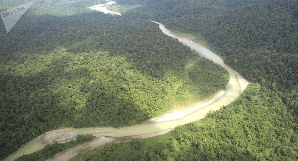 Amazonie (image d'illustration)