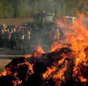 Des agriculteurs français allument des «feux de la colère»