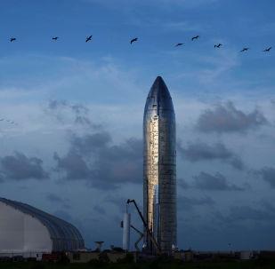 Un prototype de la fusée Starship de SpaceX présenté à Boca Chica au Texas