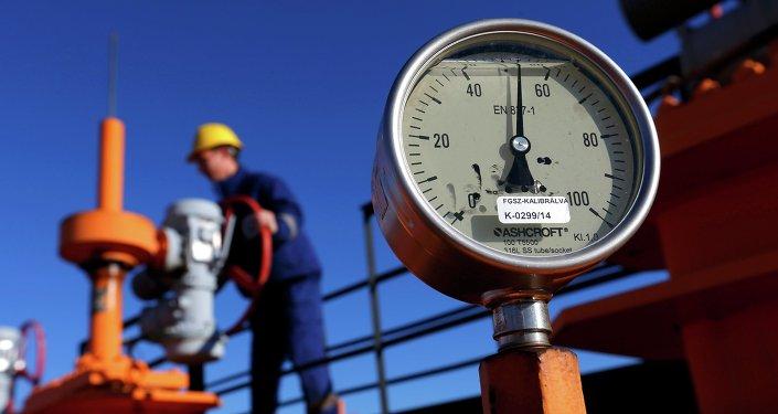 Le gaz, combustible discrédité par une politisation excessive (OMV)
