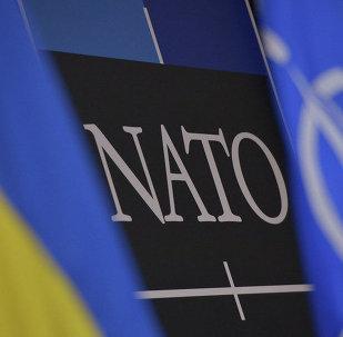 Drapeaux de l'Ukraine et de l'OTAN