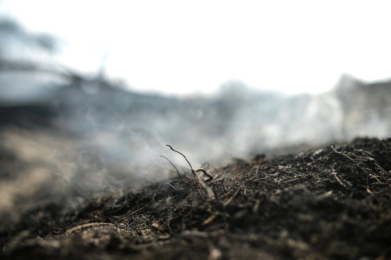 Feux de tourbière: la fumée atteint Moscou