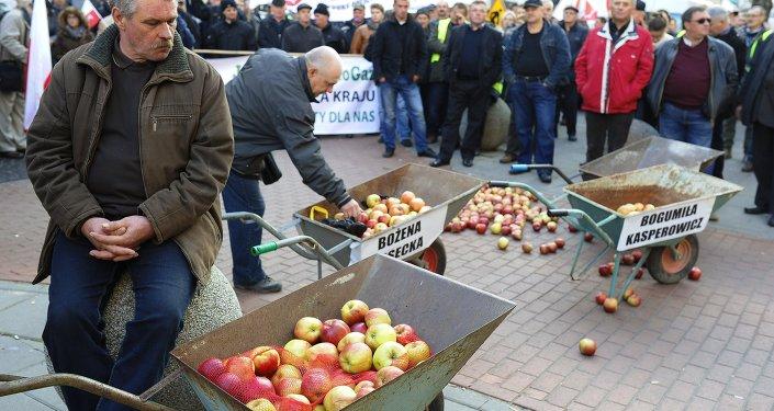 Agriculteurs polonais (archives)
