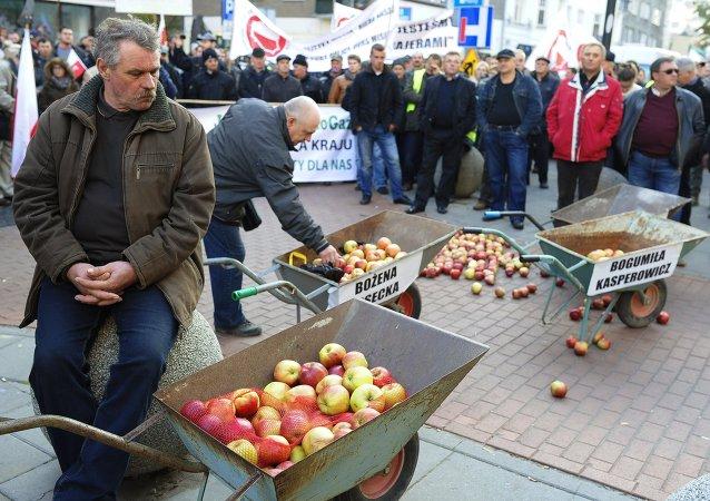 Un rassemblement de protestation d'agriculteurs polonais à Varsovie