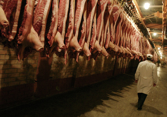 Carcasses de porc