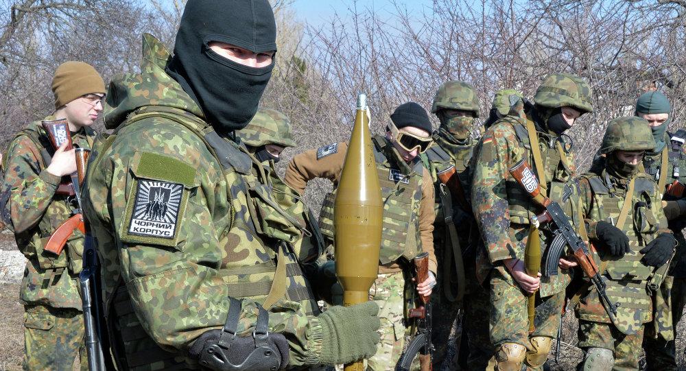 Militants du bataillon Azov