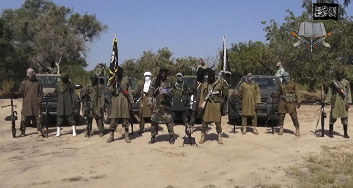 Des combattants de la secte islamiste Boko Haram