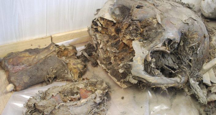 Les fragments de mammouth. Les archives