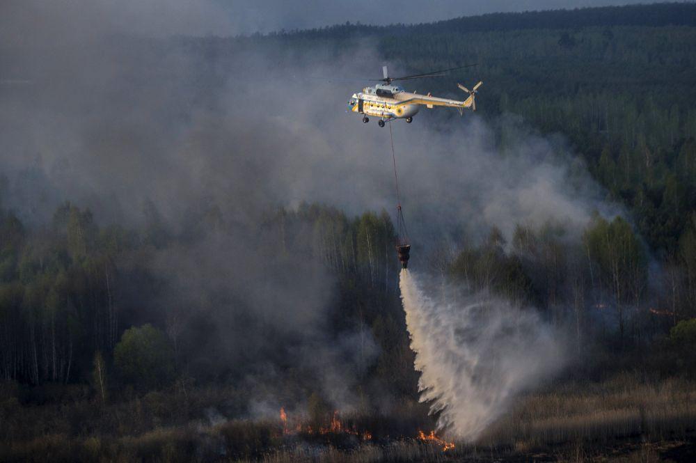 Feu de forêt dans la zone de Tchernobyl