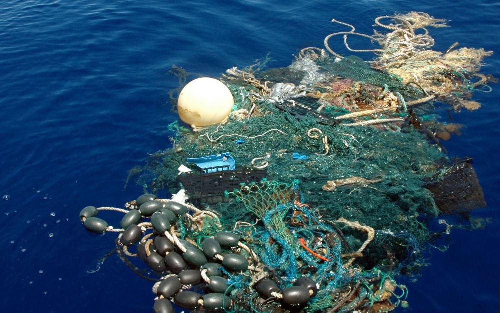 L'océan, cet abîme de mystères...