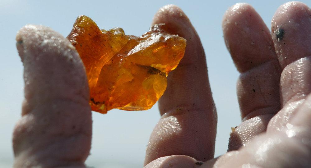 Добыча янтаря в береговой зоне Балтийского моря