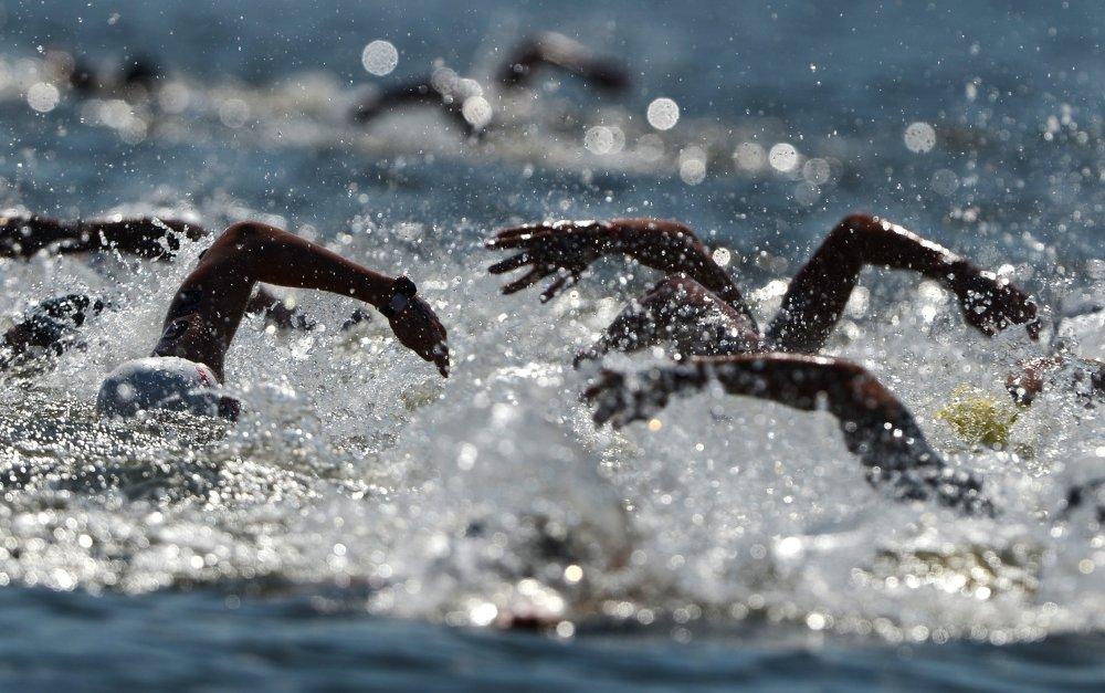 Les nageurs du 10 km de nage en eau libre hommes