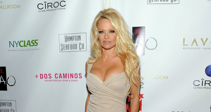 Actress Pamela Anderson attends A Night of New York Class gala benefit to help ban New York City carriage horses on Tuesday, Oct. 23, 2012 in New York