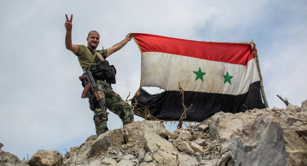 Drapeau syrien, image d`illustration