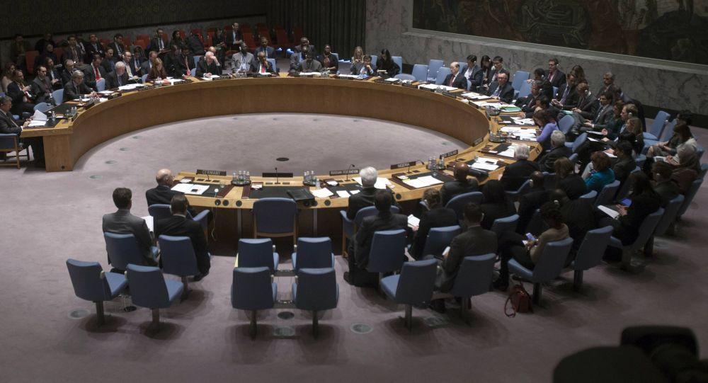 CS de l'ONU