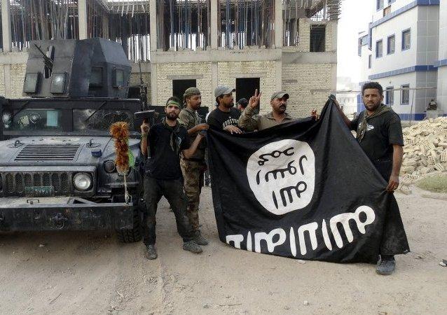 Des combattants du groupe terroriste Etat islamique