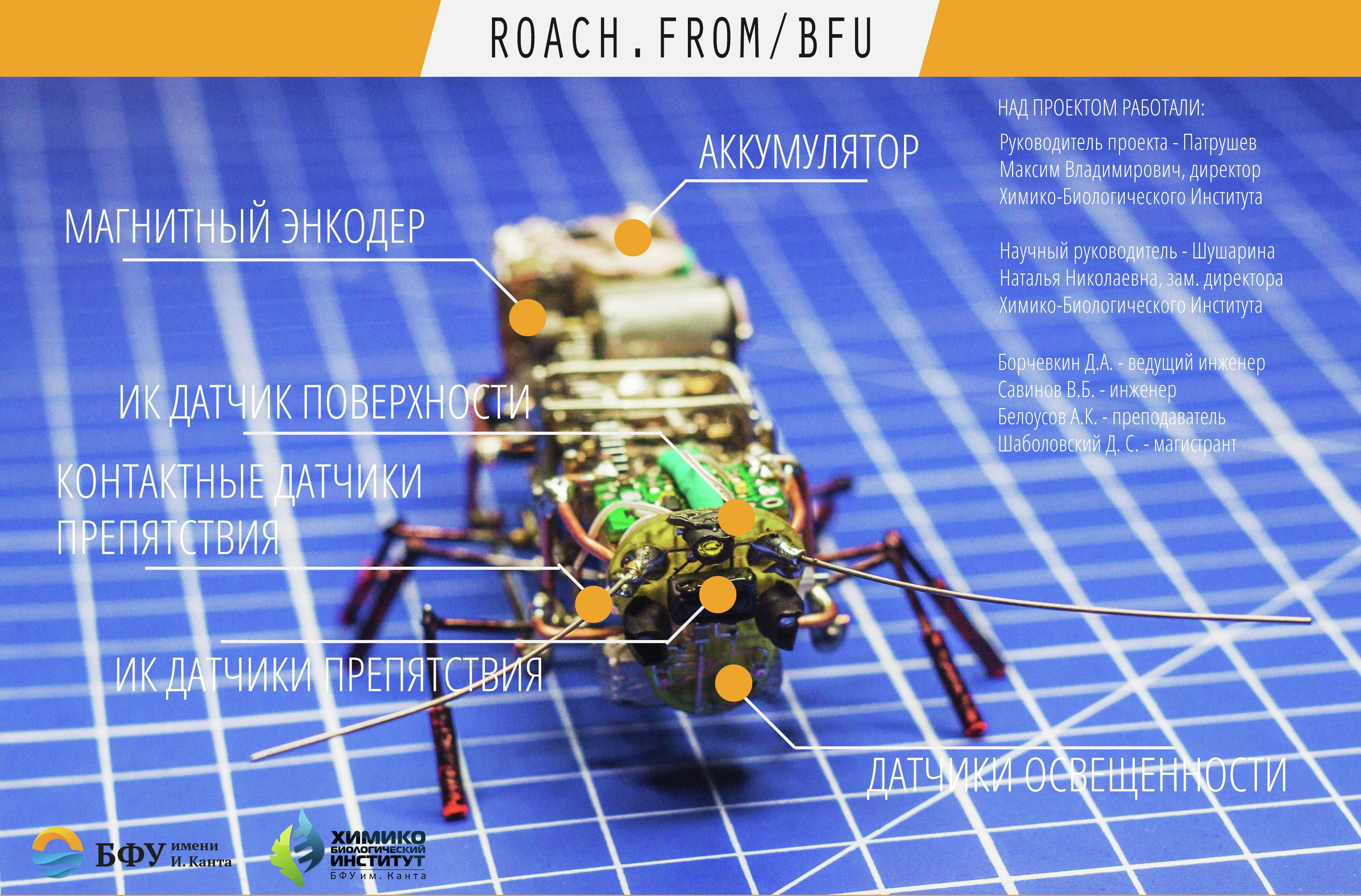 Une affiche du projet Robot-cafard