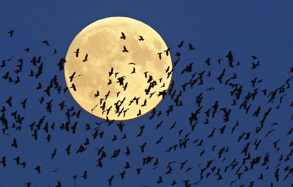 Une super Lune de sang exceptionnelle