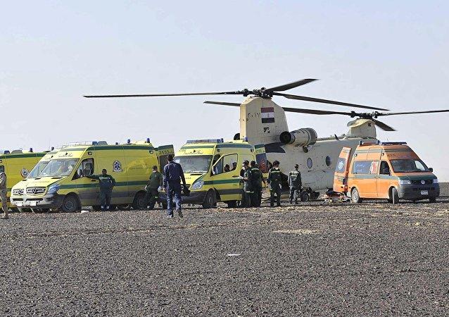 Ambulances prêtes à transporter les corps des victimes du crash d'un avion russe en Egypte (31 octobre 2015)