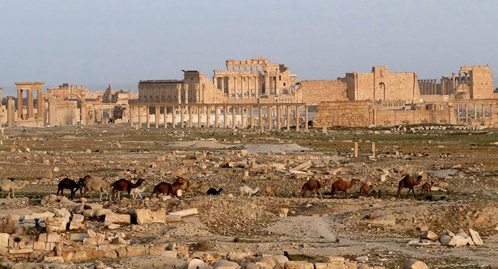 Cité de Palmyre, en Syrie