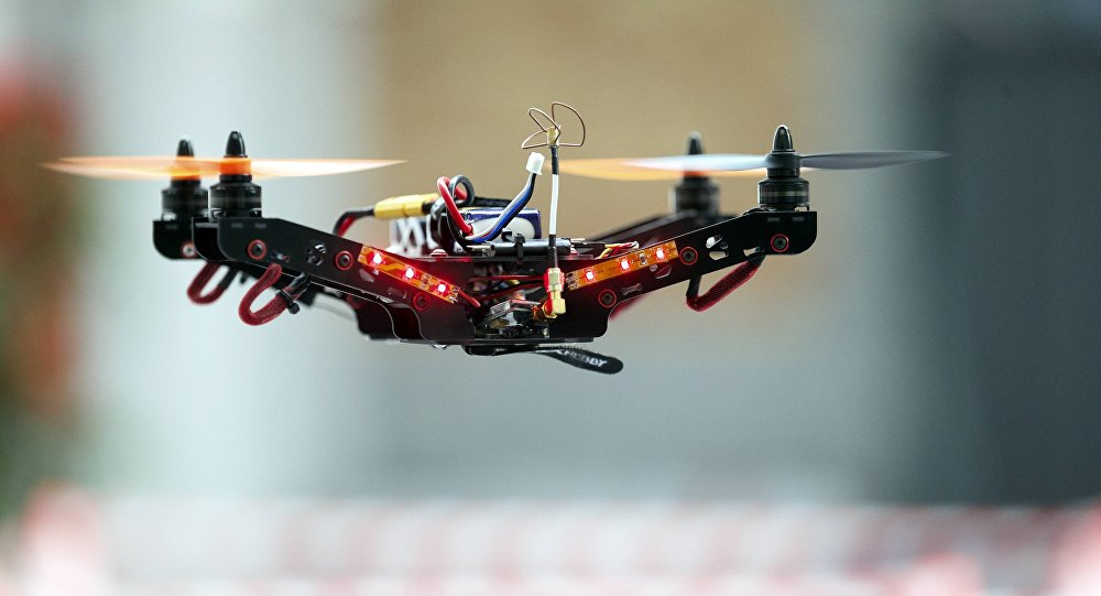 drone adulte