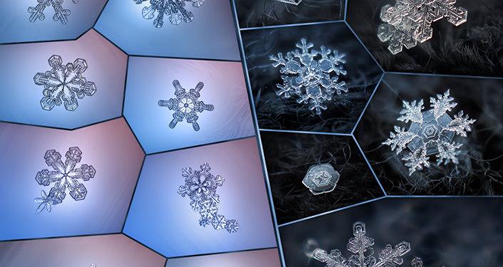 Fascinants flocons de neige