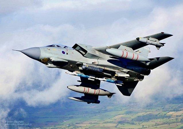 Un avion de combat britannique percute un chien errant