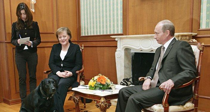 Vladimir Poutine, Angela Merkel et le labrador Koni