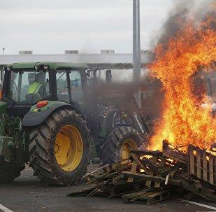 Les éleveurs français se rassemblent près des palettes brûlantes pour protester contre la chute des prix sur l'autoroute à Ancenis, l'ouest de la France, le 27 Janvier, 2016
