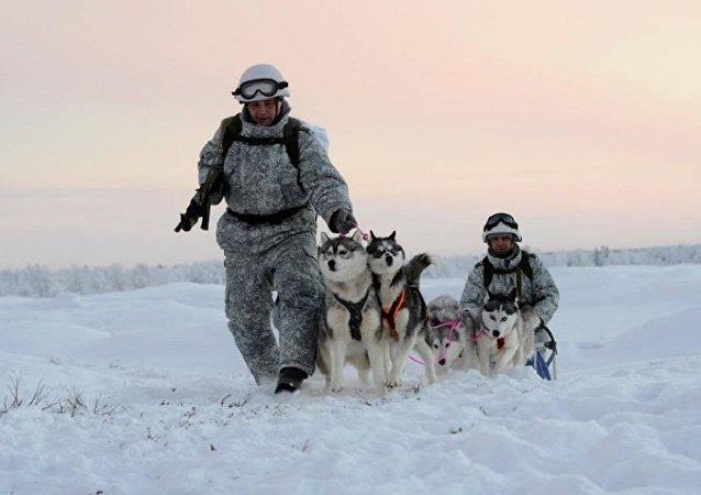 Les éclaireurs de la Flotte du Nord en traineau à chiens