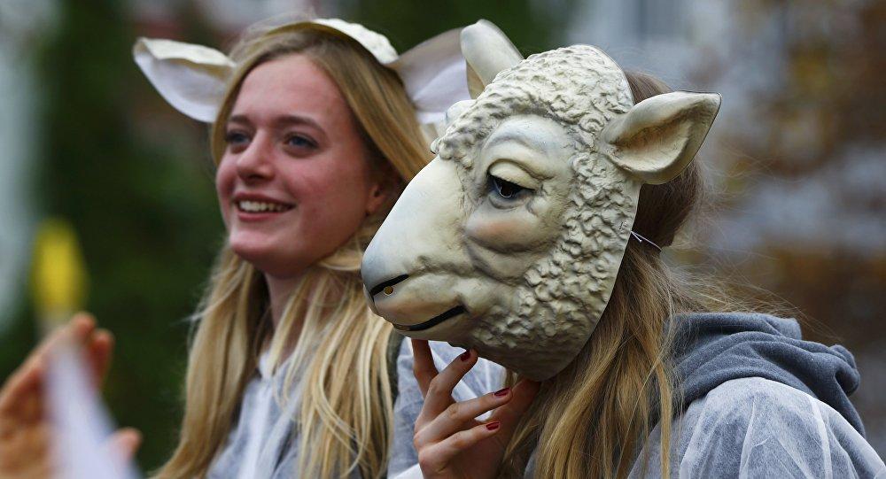 Carnaval à Cologne