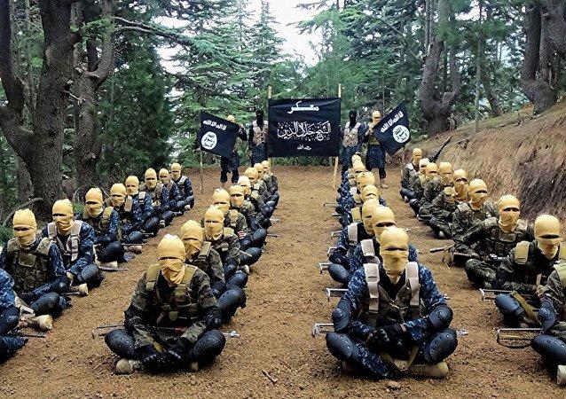 Combattants de Daech