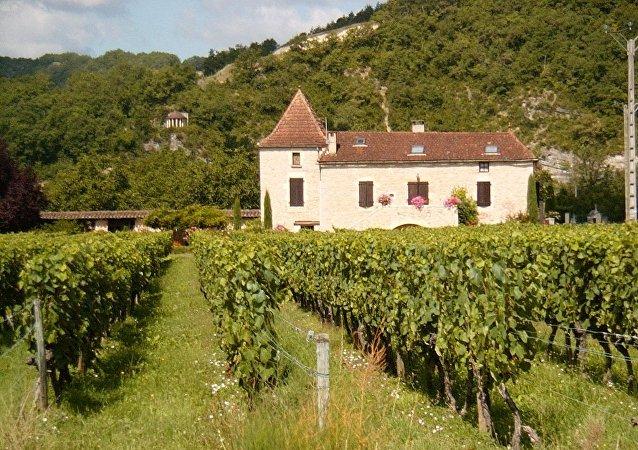 Cahors est le nouvel Eldorado viticole