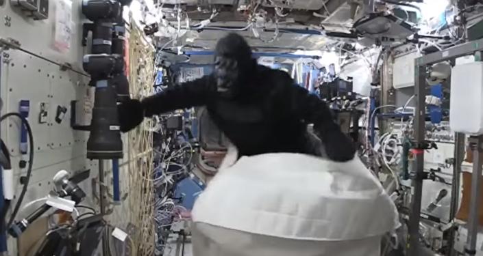 Scott Kelly déguisé en gorille