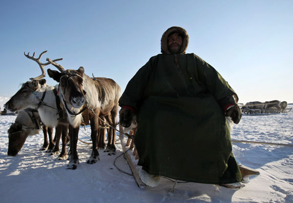 La Russie est connue pour son climat froid. Les régions polaires russes attirent des touristes intrépides, invités à se familiariser avec la culture des peuples autochtones et à découvrir le monde animal de la région.