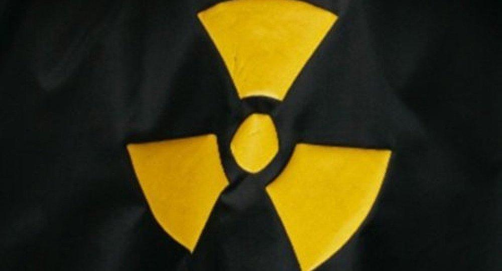 Japon : déchets radioactifs stockés dans les forêts