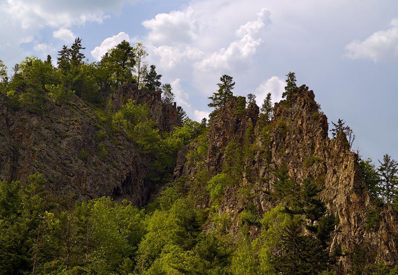Le parc naturel national de Botchinski, dans la région de Khabarovsk a été fondé en 1994 afin de protéger les tigres de l'Amour et de conserver la flore fossilisée du tertiaire.