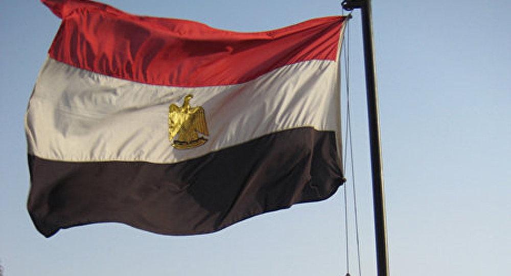 L'ancien vice-président de l'Egypte participera à l'élection présidentielle