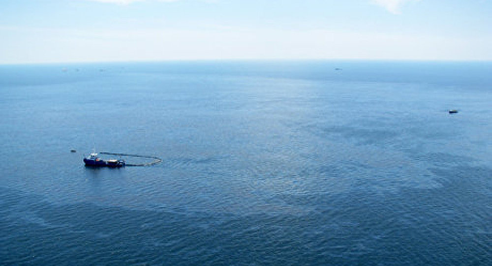Les isotopes du césium s'accumulent dans le golfe de Tokyo