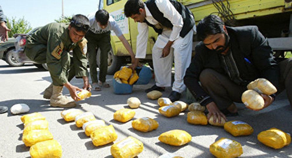 La production d'opium augmente en Afghanistan