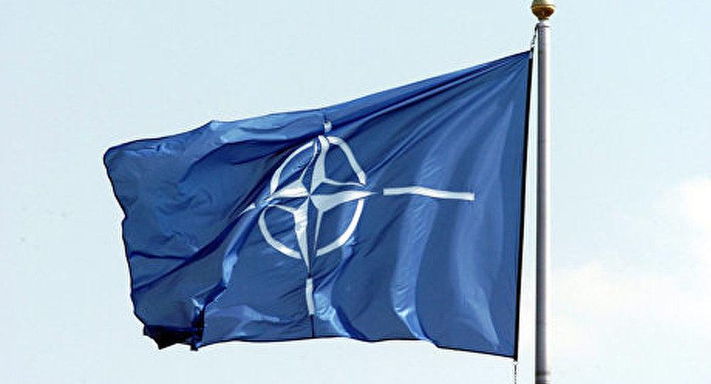France et OTAN. Amour ou divorce ?