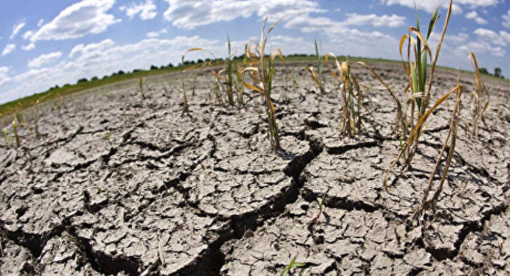 Désertification : la planète se transforme en terre morte