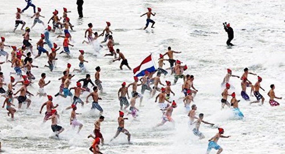 Les Pays-Bas : 37 000 « morses » ont plongé dans l'eau