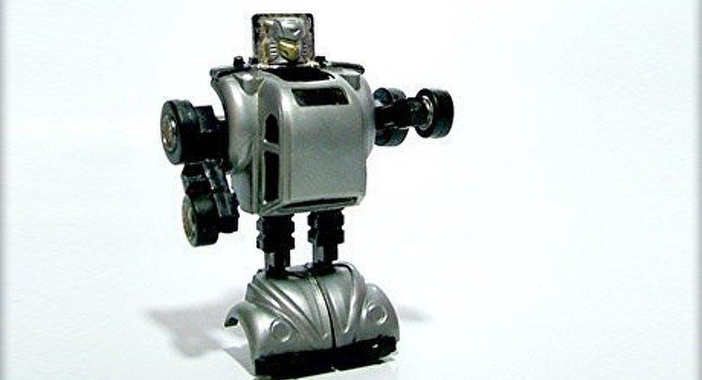 La Suisse créera le premier robot-humanoïde à domicile en 2013