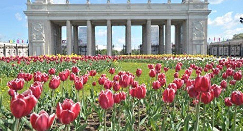 Moscou aura ses Hyde Park