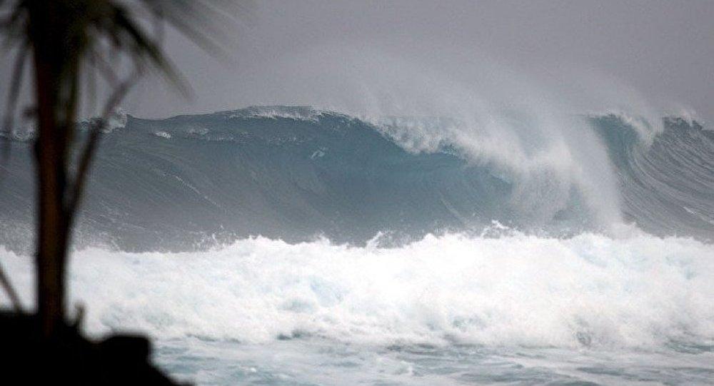 Des écologistes proposent de donner aux ouragans les noms d'hommes politiques